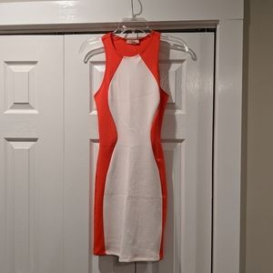 | bodycon dress |